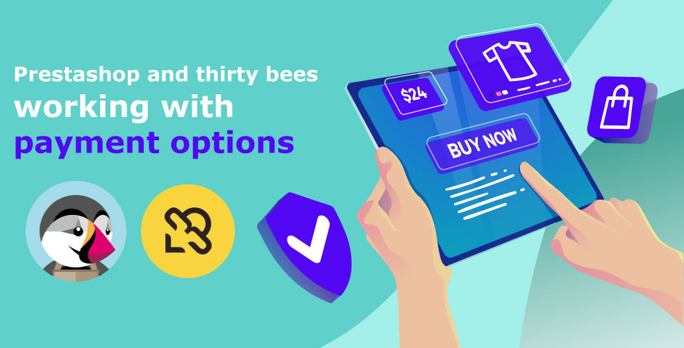 Payment Options Thirtybees