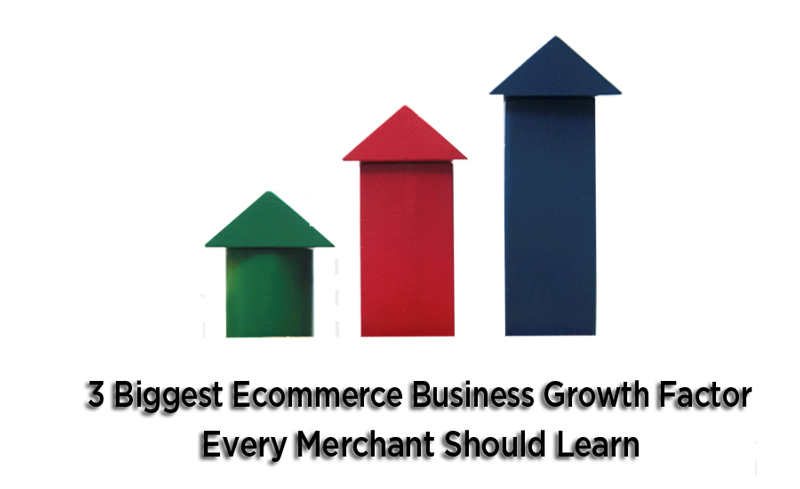 ecommerce business growth factor