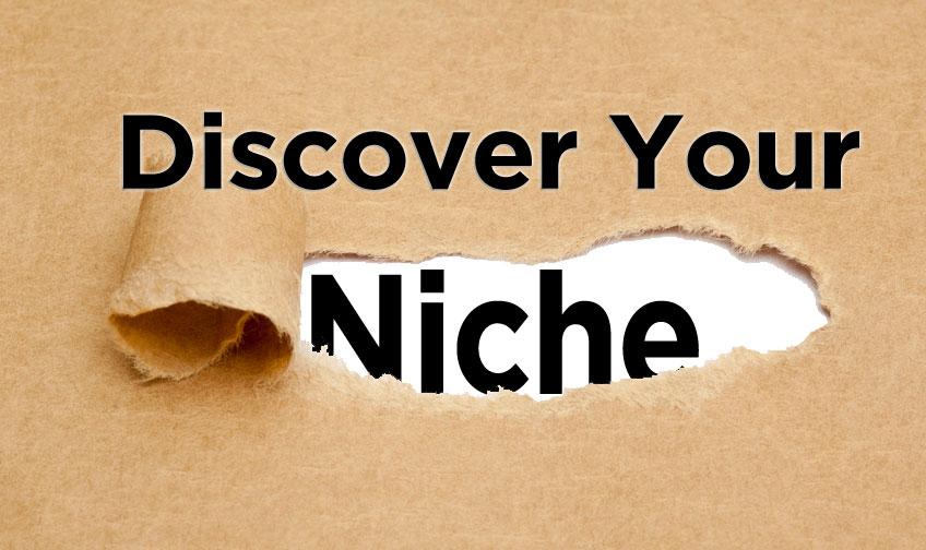 profitable niche
